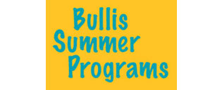 sponsor_bullissummer